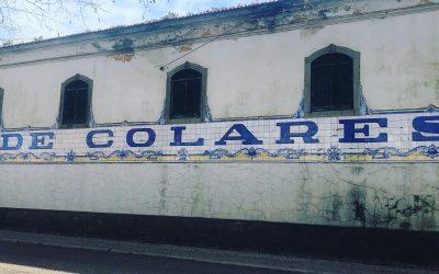 Blog: ons bezoek aan Colares